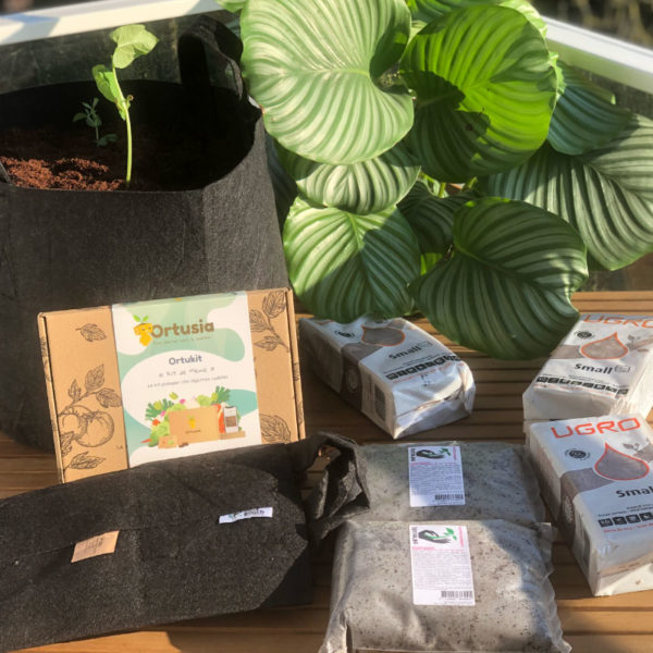 Pack potager 5