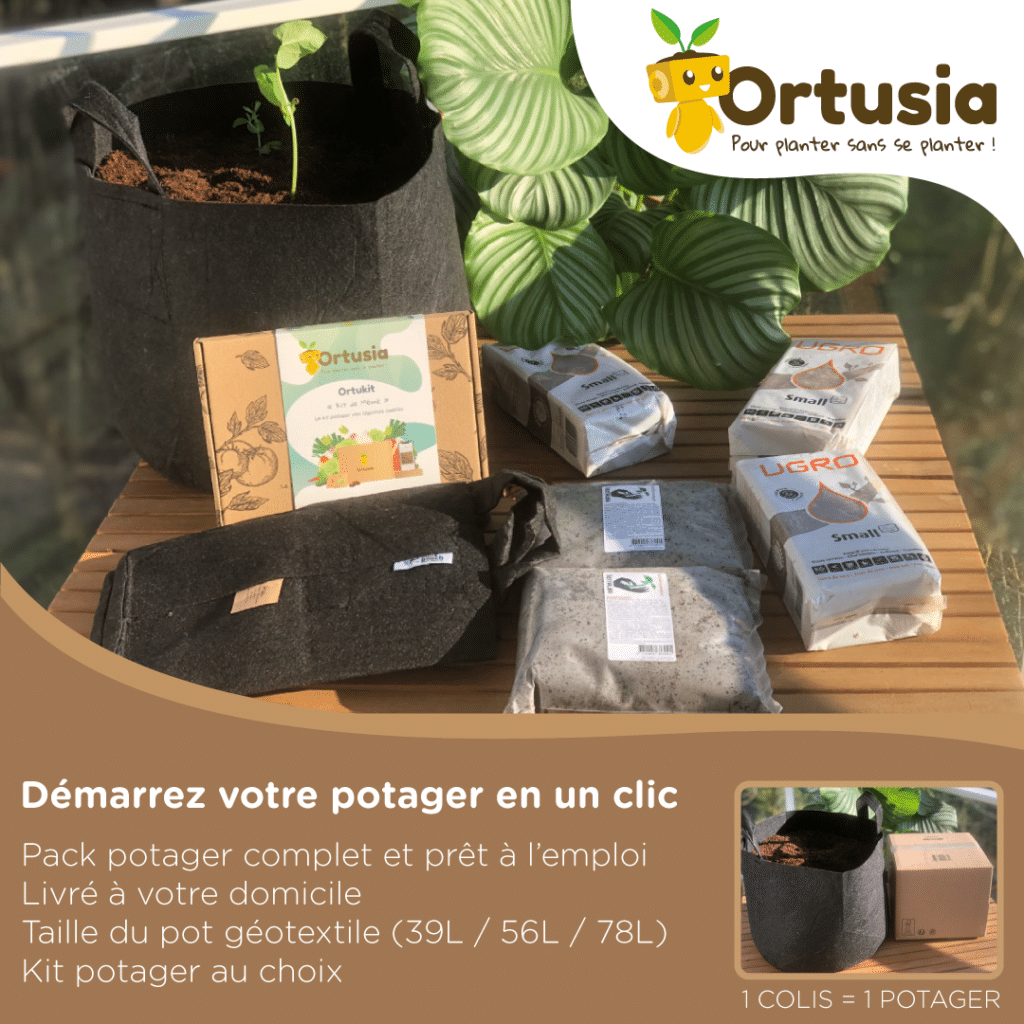 Pack potager Ortusia